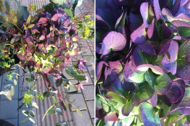 Bukett i lila toner med hortensia som bas