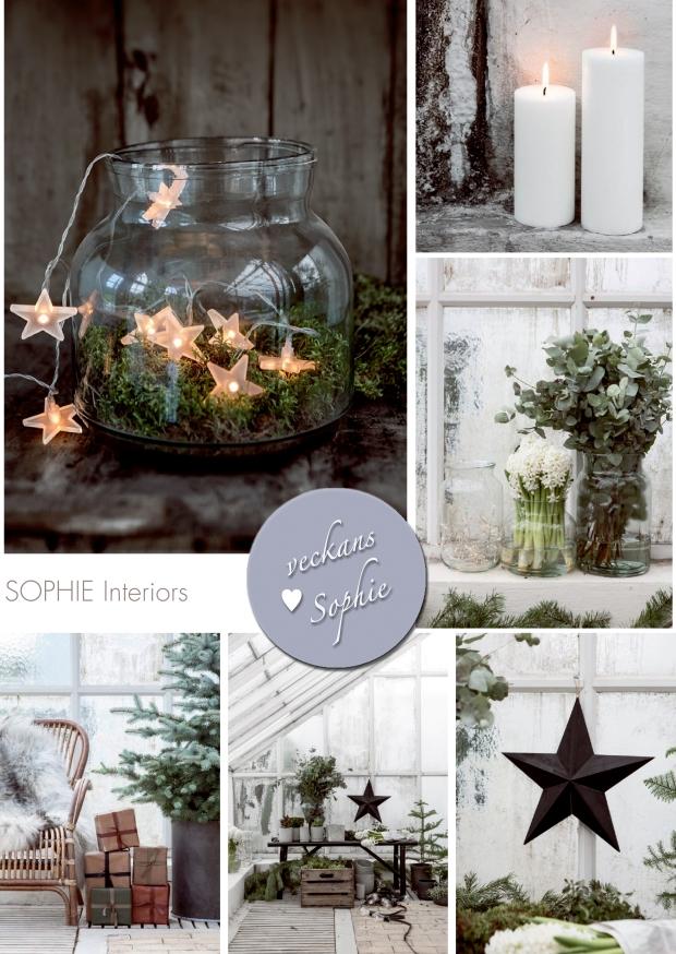 En ljuslykta, ljus, eucalyptus och hyacinter. Julstämningen är hög i detta collage med bilder från Granit!