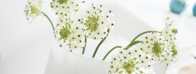 blommor gör underverk för inredningen