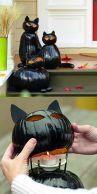 Fantastiska svarta pumpakatter! Bilden är lånad från Pinterest och återfinns med länk på vårt konto där.
