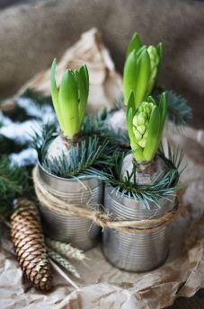Bild hittad på Pinterest och lånad från: gronaskafferiet.se