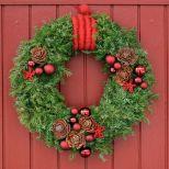 Bild lånad från holmsundsblommor.blogspot.se